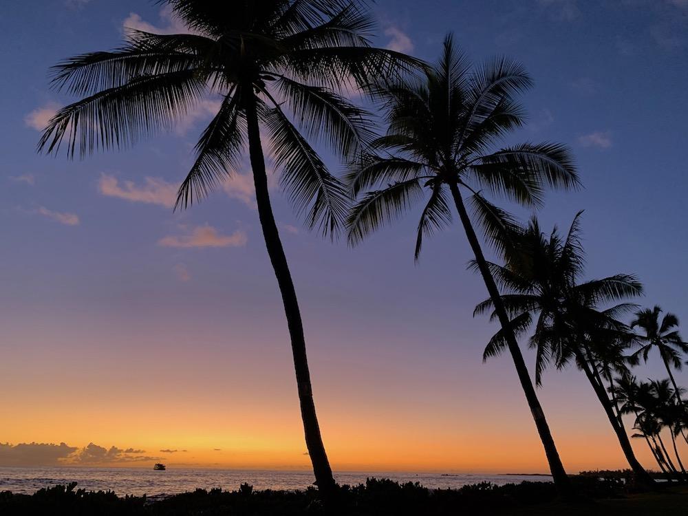 Dieses Bild hat ein leeres Alt-Attribut. Der Dateiname ist aloha-feeling.jpg